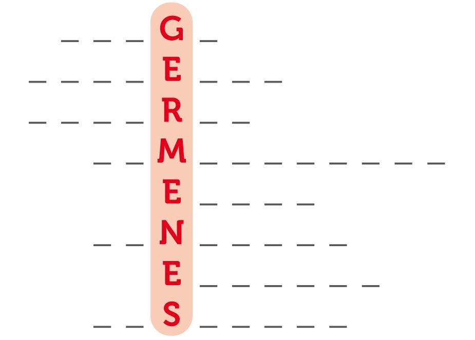 DE-Mi Cuerpo_Higiene_Germenes-crucigrama (2)